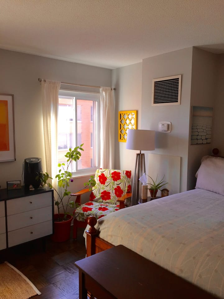 Sunny studio with outdoor space available Dec 21!