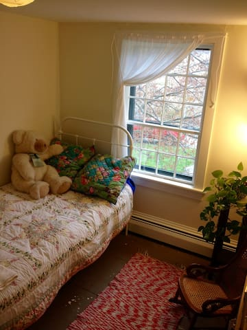 Tiny Room @ Yellow House - Trumansburg - Hus