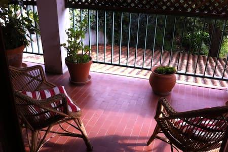 Residência Hespanhola - Lamego - 家庭式旅館
