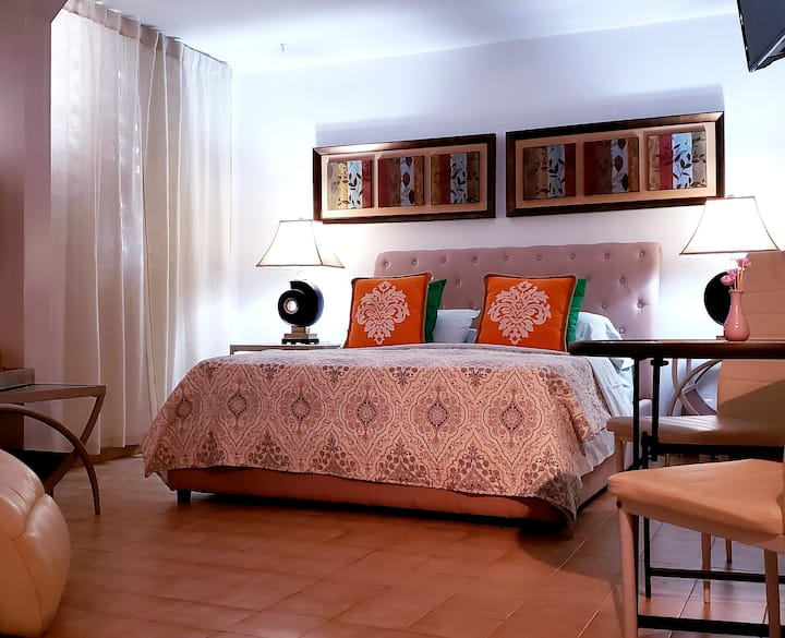 Caparra Master Room Apt -Bayamon w/ Wifi -Cable TV