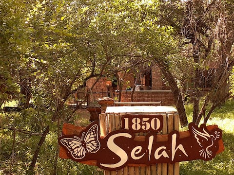 Selah welcomes You! - Take time to reflect - Nestled in the quiet African bush - surrounded by wildlife and an abundance of birdlife is where you'll find a comfortable home away from home.