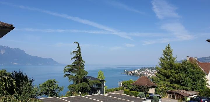 Magnifique appartement dans Montreux