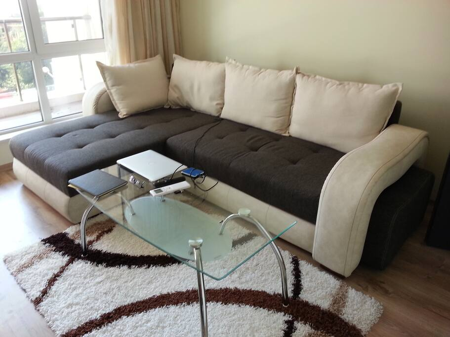 Big comfy pull-out couch in living room, sleeps 2 people comfortably when pulled out