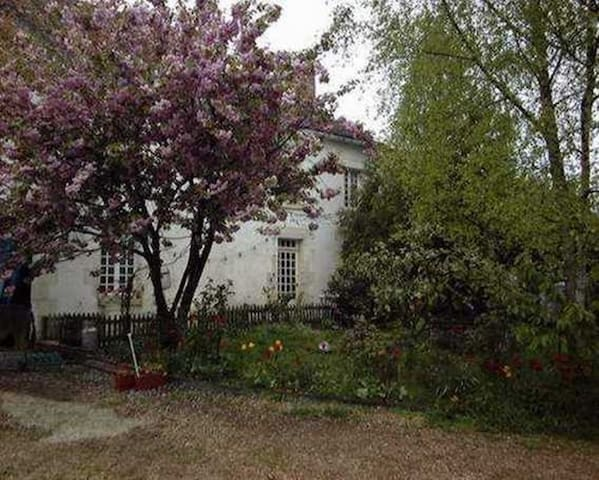 Les Chouettes maison d'hôtes - Treigny - Lainnya