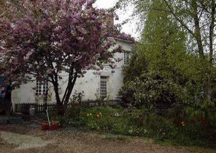 Les Chouettes maison d'hôtes - Treigny