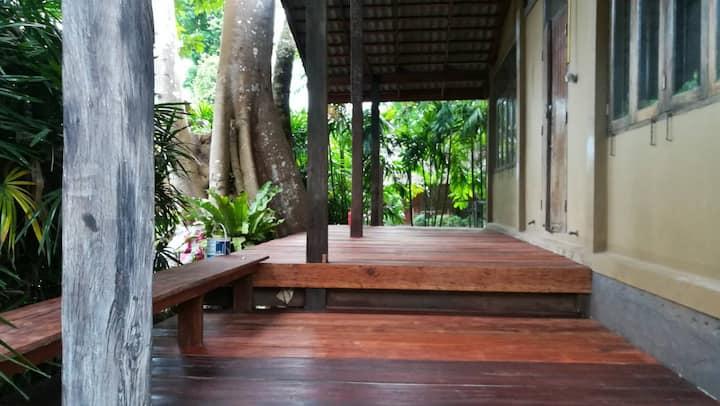 Koh Chang Residence Big Tree House