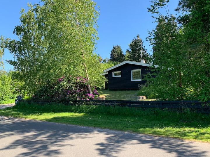 Charmerende sommerhus i Hornbæk