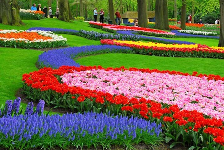 Keukenhof flowerpark (23km) open from April until about half may