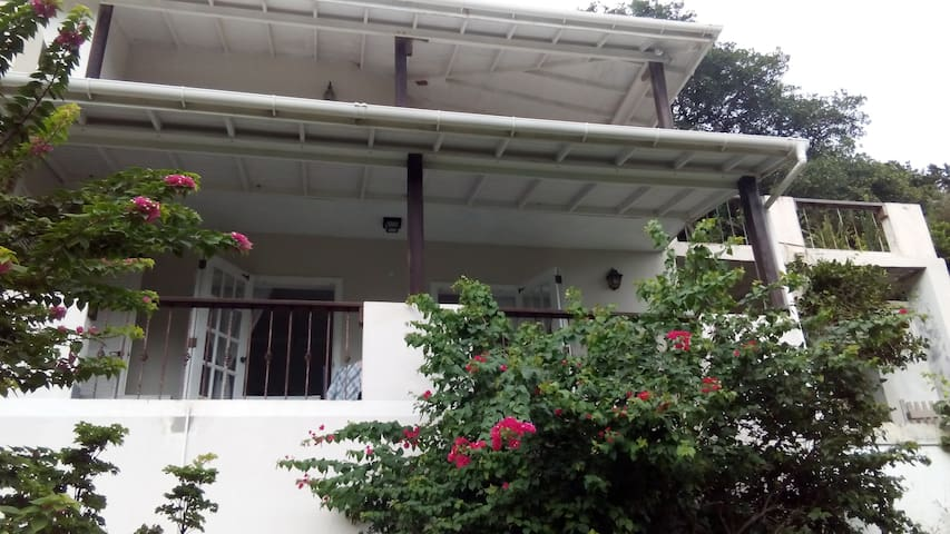 One Bedroom Apt in Bequia - Leilighet