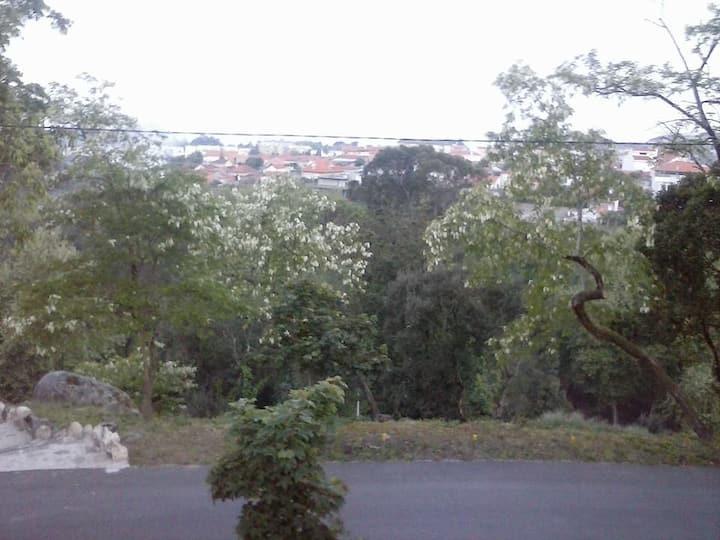 Está no Porto mas sem o agito do grande centro