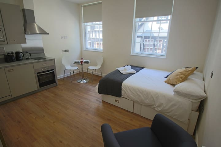 Apartment 15 Harford House - Bristol - Apartamento