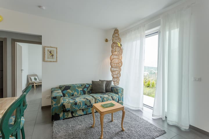 2 bedrooms apartment with view