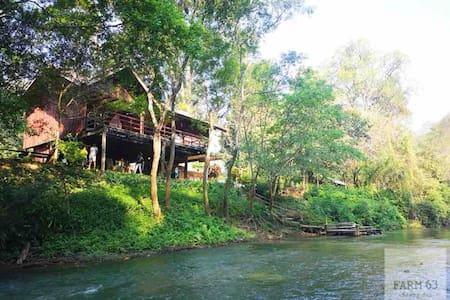 Farm63 Chiang Dao