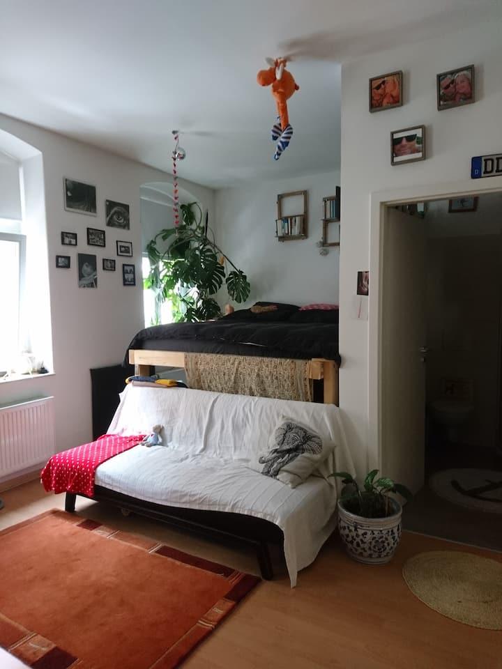 Single Wohnung im Herzen von Dresden