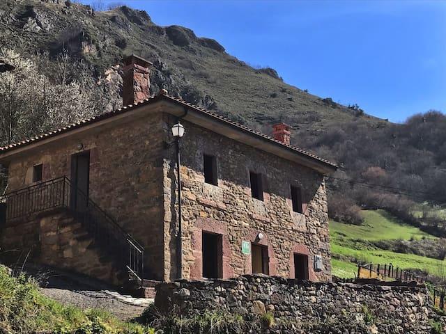 Apartamentos rurales Xaranzana - Pola de Somiedo - Apartment