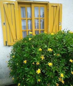 Casa Amarela II