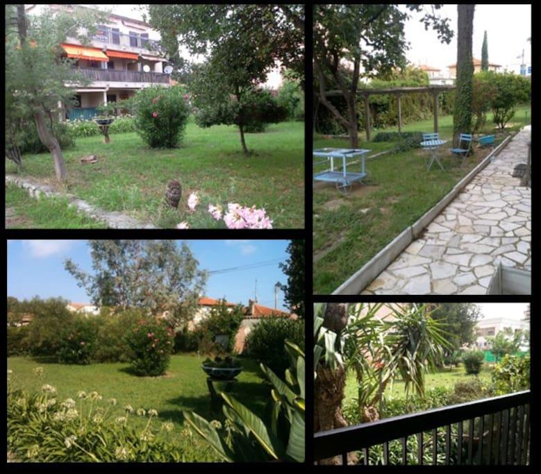 Extérieur - Jardin arboré