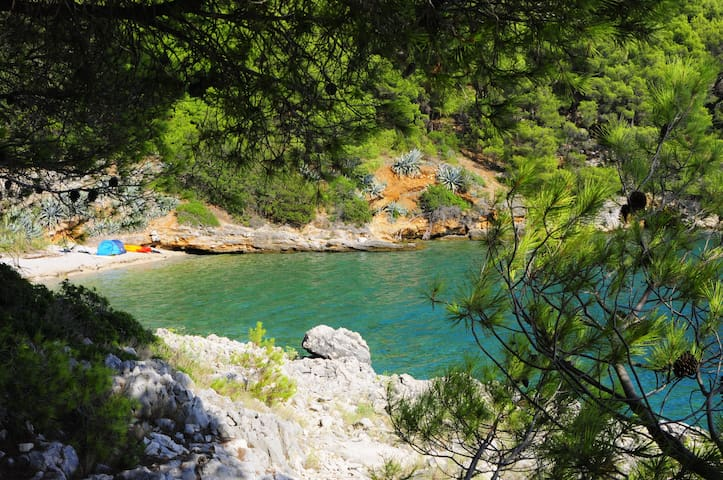 Incredible Paradise Camping in Medvidina Bay