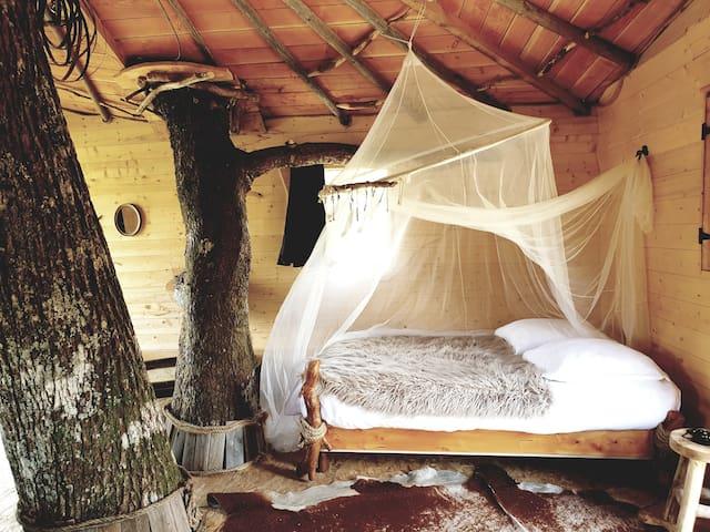Cabane perchée dans un chêne près de la Salvetat!