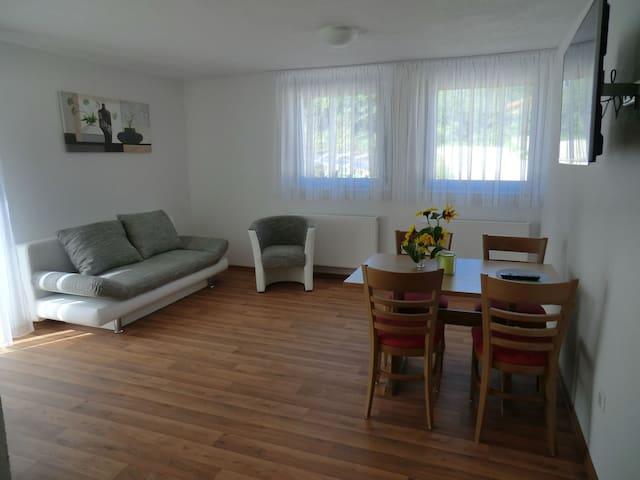 Pension Steinle, (Erbach), Ferienwohnung, 60qm, Terrasse, 2 Schlafzimmer, max. 5 Personen