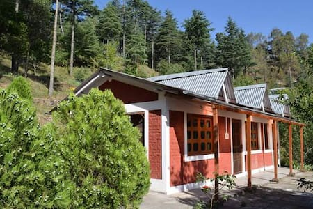 Amazing Nanda Devi Cottage !!! - Papar Saili