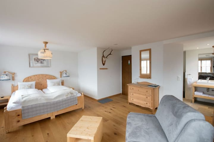 Hotel Postigliun, (Andiast), 59001B-FK, Kopie von Double room with shower/toilet, large