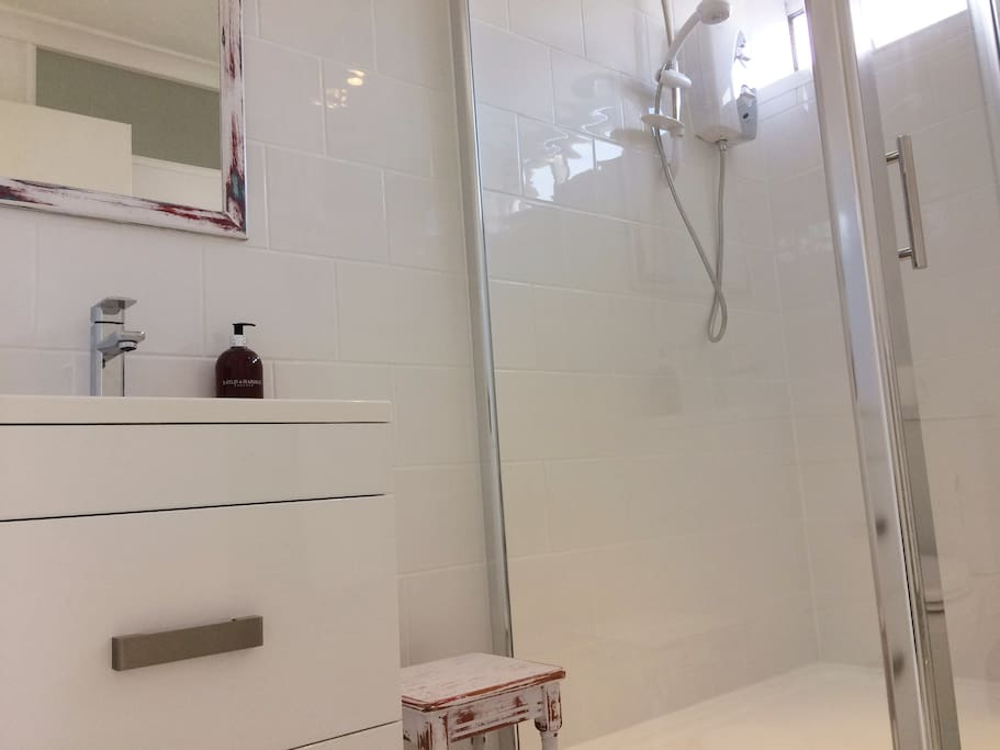 Shower room and basin