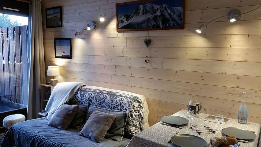 Studio en bord des pistes de ski et VTT, aux Gets.