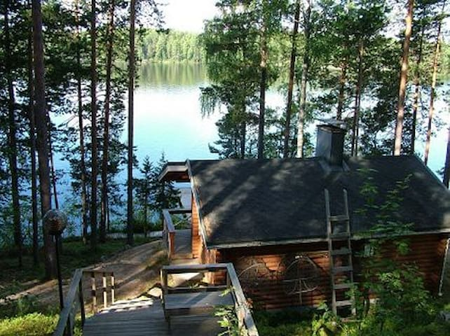 Log cabin by the lake Konnevesi