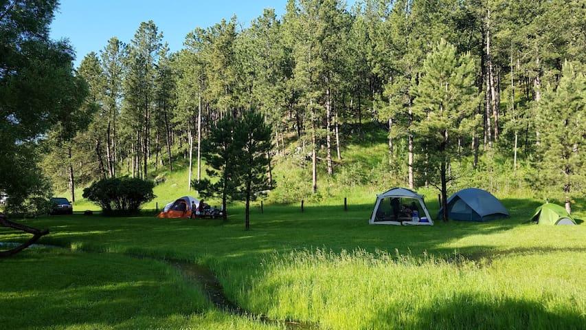 Plenty Star Ranch - Tent Site - No 5 of 8