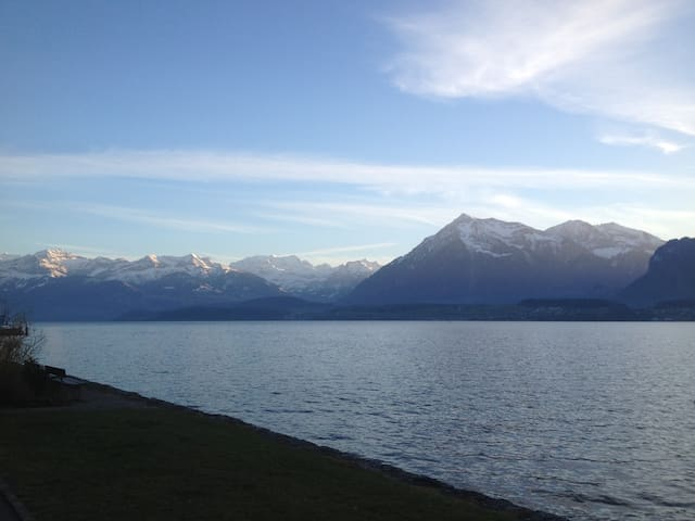Studio in best location, next to the lake Thun