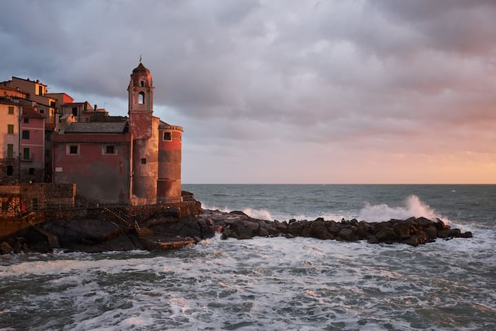 Vicino / Nearby Tellaro