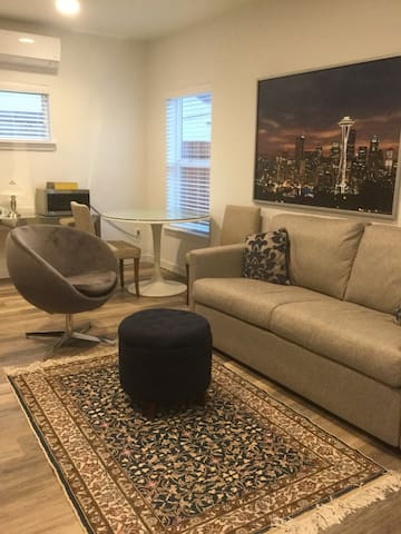 Big room with Seattle sleeper sofa bed. All is brand new