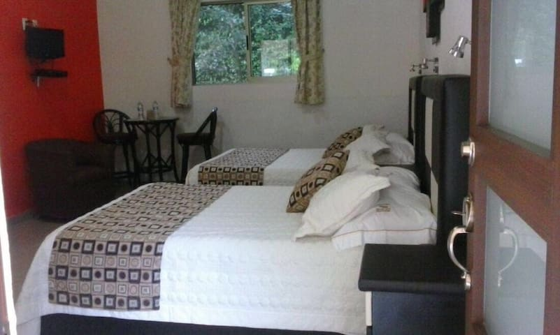 Habitación doble  Con dos camas matrimoniales