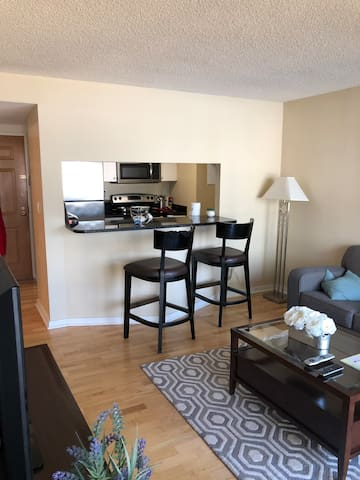 Beautiful Apartment in Downtown Stamford