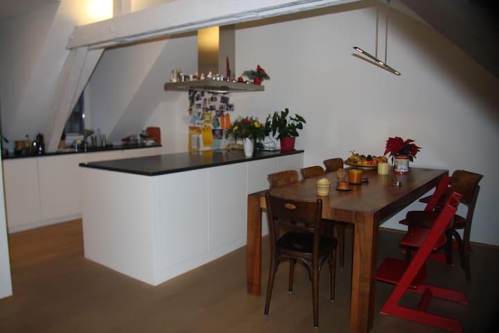Baselworld flat close to Messe - Basel - Apartament