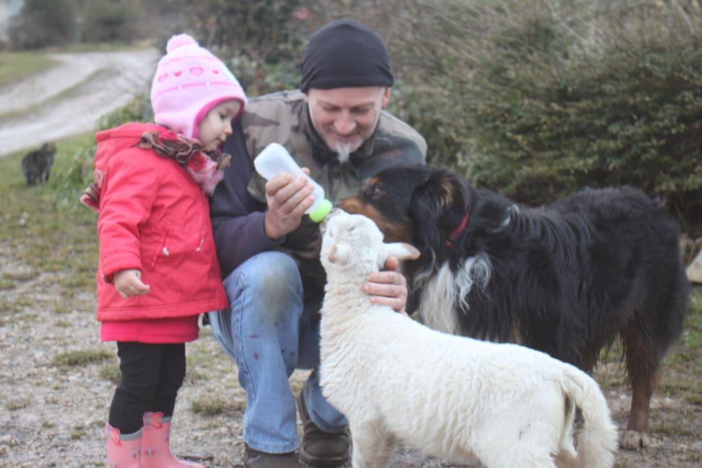 Il y a toujours des moments de partage dans une ferme !