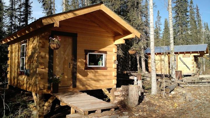 Blackburn Cabins: Forks Cabin 3