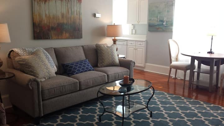 Historic Downtown 1 Bedroom Walk to Everything! D