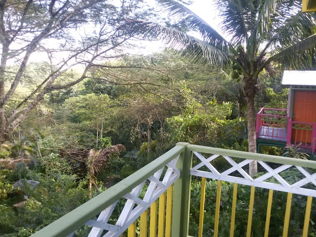 Eco-Cottage on the edge of a rainforest - The Twin - Lucea - Natur-Lodge