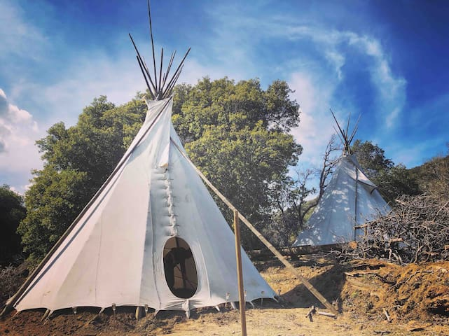 Sanctuary Space on Rusted Mountain Ranch: Tipi #2