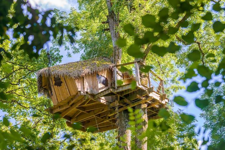 Cabane Sensations pour 2 personnes - Chassey-lès-Montbozon - Dům na stromě