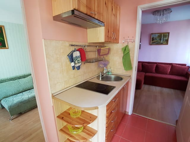 Small 2 room flat in a private house.