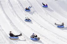 Hop on a tube at Ober Gatlinburg and take a fun ride through the snow.
