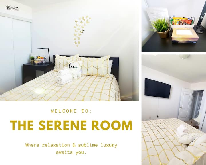 The Executive Serene Room @ Safe Haven