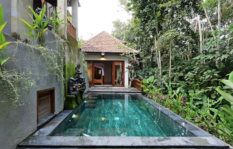 AMAZING 1BR VILLA~POOL~JUNGLE VIEW - Ubud