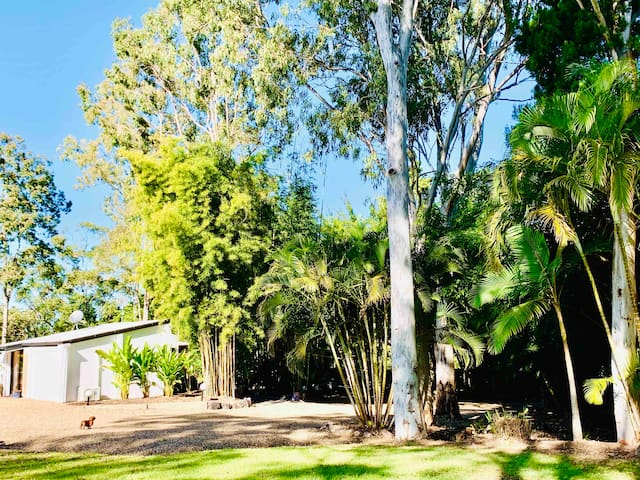 $135 per night with ☕️breakfast  🌴Noosa Hinterland🌴