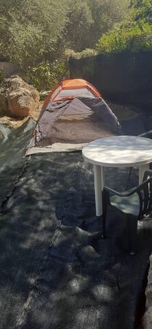 Mr. Matthew camping