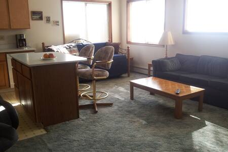 SEAVIEW CONDO in Downtown Cordova, Alaska