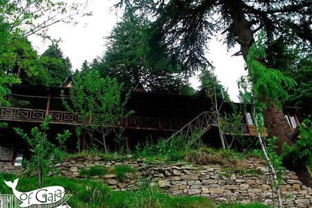 Home of Gaia - Manali - Haus